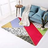 GXQ Nordic Teppich Wohnzimmer Schlafzimmer voller Couchtisch Schlafsofa Kopfteil Super weich waschbar (Farbe : B, größe : 100x150cm(39x59inch))