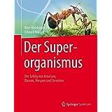 The Superorganism: Der Erfolg Von Ameisen, Bienen, Wespen Und Termiten: Nachdruck 2015