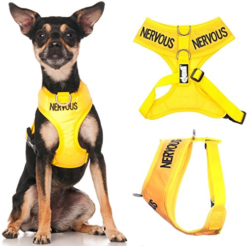 NERVOUS (Give Me Space) Yellow C...