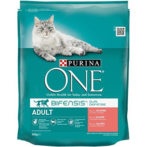 Purina ONE bifensis pienso Peri el Gato Adulto, Ricco de Salmón y Cereales integrales, 800g