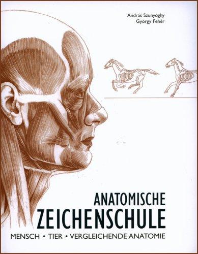 Anatomische Zeichenschule: Mensch. Tier. Vergleichende Anatomie