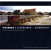 Grimma: Flutbilder - Bilderflut