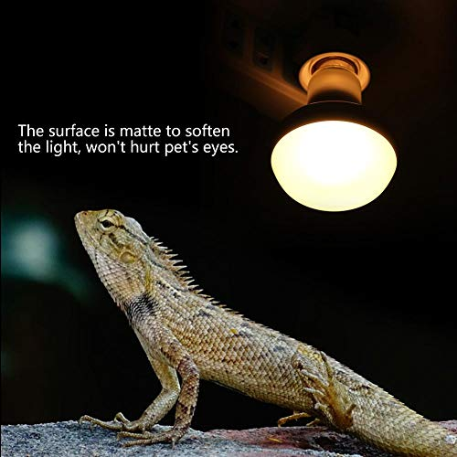 E27 Rettile Lampe Calore Bulb Spettro komplett Heizelement Lampe Tier Domestico Anfibio Lampe Heizung Lampe Terrario Lucertola Tartaruga Schlange Amphibien-warmes Weiß Led