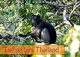 Tierisches Thailand (Tischkalender 2019 DIN A5 quer): Wunderbare Tierwelt Thailands (Monatskalender, 14 Seiten) (CALVENDO Tiere)