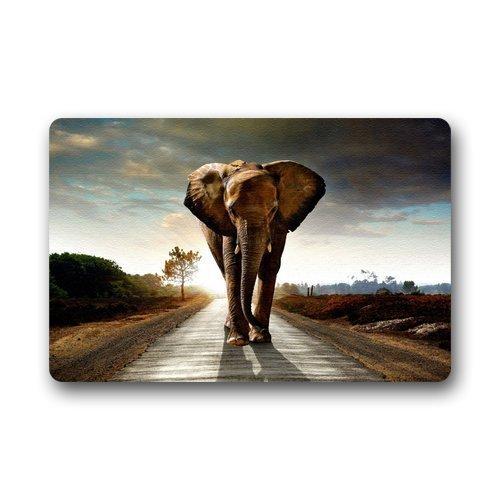 solatman Innenbereich Fussmatte draussen Tür-Matte Fußmatte Willkommen Girly Whimsical Elephant Lustiger Teppich 50 x 80 cm
