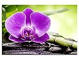 kunst-discounter Bild Leinwandbilder Canvas Basalt Steine mit Orchidee Wellness A05404 60 x 40 cm
