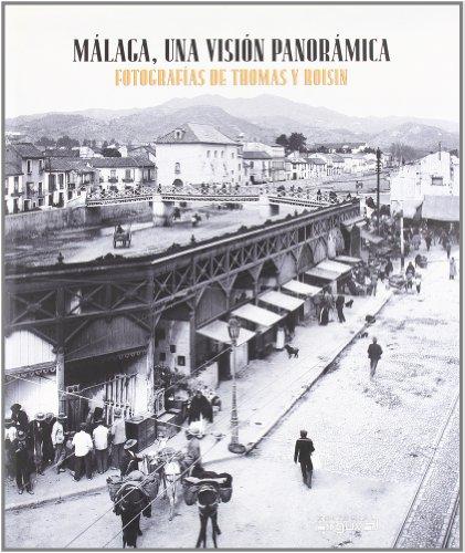Descargar Libro Málaga, una visión panorámica (IMPRESIONES) de Javier Ramírez González