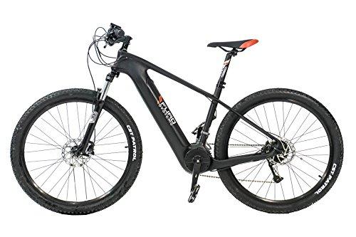 FuroSystems Sierra Full Carbon 350W ELEKTRISCHEN Bike