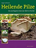 Heilende Pilze: Die wichtigsten Arten der Welt im Porträt