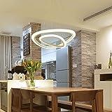 LED Zwei Ringe Pendelleuchte Modern Rund Design Hängeleuchte Esszimmerlampe Wohnzimmerlampe Esstischlampe Beleuchtung Leuchte Acryl Metall 30W Schwarz weißes Licht Höhenverstellbar