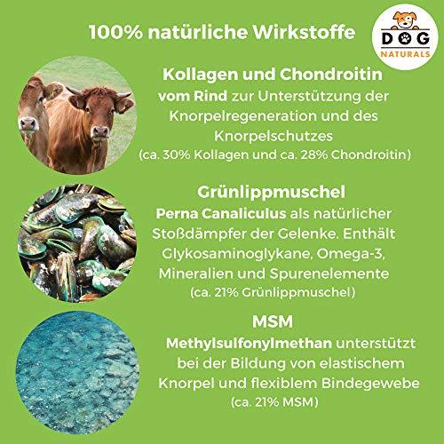 Dog-Naturals Gelenk-Fit Pulver für Hunde, natürliches Ergänzungsfutter mit Grünlippmuschel, Kollagen-Hydrolysat, Chondroitin und MSM, 175 g