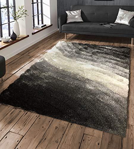 Modern Style Rugs Living Room - ...