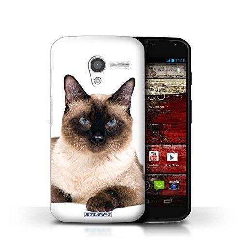 Kobalt® Imprimé Etui / Coque pour Motorola MOTO X / Scottish Fold conception / Série Espèces de chats Siamois