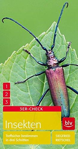 insekten-treffsicher-bestimmen-in-drei-schritten