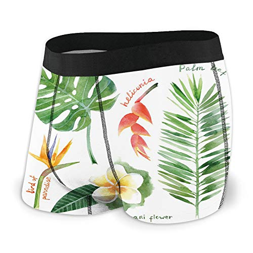 Generic Men's Underwear Sports Boxer Briefs, Bird of Paradise Palm Leaf and Assorted Exotic Flowers Watercolor,XL -