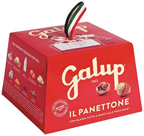 Galup nv01 panettone classico, 100 gr - pacco da 6