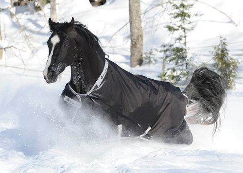 BUCAS Outdoor Pferdedecke SMARTEX EXTRA, schwarz, 145