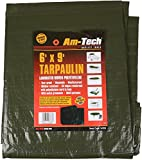 AM TECH GREEN TARPAULIN 6' X 9'