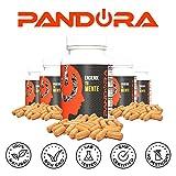 Pandora Natural Nootropic. Promuovere la Concentrazione e la Memoria. Migliora la Tua Energia e Motivazione ( Bacopa Monnieri , Huperzine-a, Ginkgo Biloba, Lion's Mane, Caffeina, Teanina). Nootropica