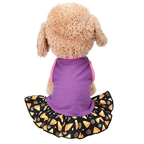 Katze Kostüm Rock Star - Hawkimin Haustier Weste Rock Stilvolles Lila Stars Baumwollmischung Frühlings und Sommer Hunde Katze Kostüm Kleid Weste für Kleine Haustiere