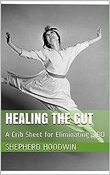 Healing the Gut: A Crib Sheet for Eliminating SIBO (English Edition)