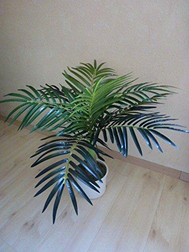 Phönixpalme Palme Kunstpflanze Dekopalme Dekopflanze 65 cm 170004-50 getopft F71