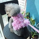 LA VIE Haustier Leine/Geschirr Set Hunde Prinzessin Kostüm Atmungsaktiver Weicher Rosa Weste Langlebig Einfach Sicher Kontrolle Hundegeschirr und Leinen Set für Hunde Haustier S