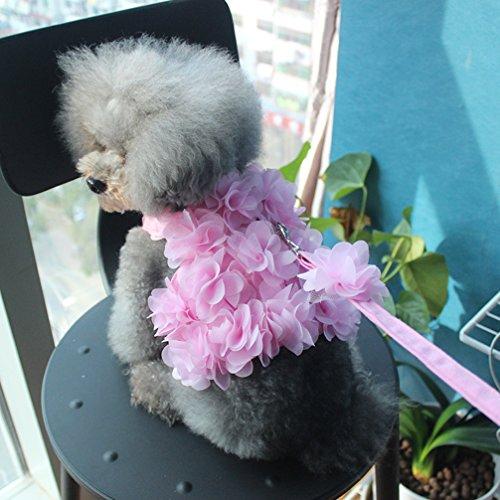 Einfach Hunde Kostüm Für Einen - LA VIE Haustier Leine/Geschirr Set Hunde Prinzessin Kostüm Atmungsaktiver Weicher Rosa Weste Langlebig Einfach Sicher Kontrolle Hundegeschirr und Leinen Set für Hunde Haustier M