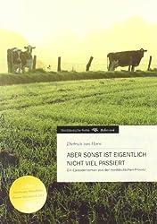 Aber sonst ist eigentlich nicht viel passiert: Ein Episodenroman aus der norddeutschen Provinz
