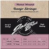 JOHNNY BROOK Set of 5 High Quality Nickel Wound Banjo Strings (9 Gauge)