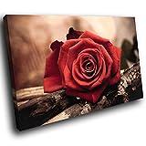 SC118GSB gerahmte Leinwanddruck Bunte Wand-Kunst - rote Rose Braun Gelb Natur - Moderne Scenic Wohnzimmer Schlafzimmer Stück Wohnkultur Interior Design Einfach Hang Guide (40x30cm)