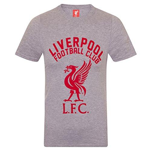 Liverpool FC Herren T-Shirt mit Printmotiv - Offizielles Merchandise - Geschenk für Fußballfans - Grau - XL
