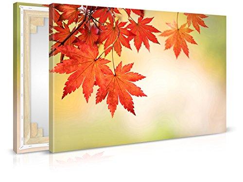 Autumn Leaves wandbilder - B - quadro, stampata, quadro, telaio, Quadro su Tela di tendenza (Autumn Leaves Tessuto)