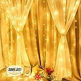 Lichterkettenvorhang 300 LEDs, 8 Modi 3M x 3M LED Lichterketten Lichtervorhang Vorhang Licht mit Fernbedienung für Weihnachten Schlafzimmer Dekoration Party Hochzeit Garten (Warmes Weiß)