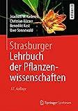 Strasburger - Lehrbuch der Pflanzenwissenschaften - Joachim W. Kadereit, Christian Körner, Benedikt Kost, Uwe Sonnewald