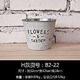 Antike Blume Eimer Eimer Brautstrauß Blumentöpfe trocken Gespielin, Vase eisenzylindern, H) , Blumen.