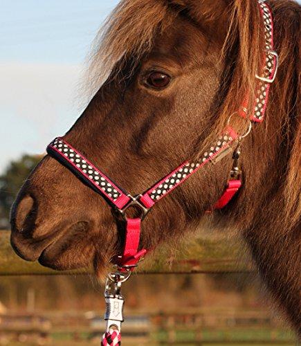 Halfter und Strick Set -Halfterset Gr. Pony