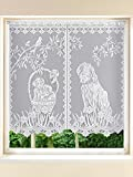 Plauener Spitz Fensterbehang Kurzgardine Stores Hund Oder Katze Weiß H/120 x B/120 cm
