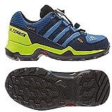 adidas Unisex-Kinder Terrex GTX Trekking-& Wanderhalbschuhe, Blau (Azretr/Maruni / Limsol 000), 31.5 EU