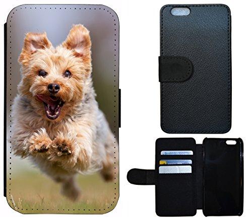 Flip Cover Schutz Hülle Handy Tasche Etui Case für (Apple iPhone 5 / 5s, 1361 Totenkopf Skull Abstract in Flammen) 1360 Yorkshire Terrier Hund Tier braun