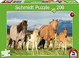 Schmidt Spiele 56199, grün