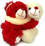 Best Husband Gifts From Wives - 10 Inches Height Romantic Love Couple Hug Teddy Review