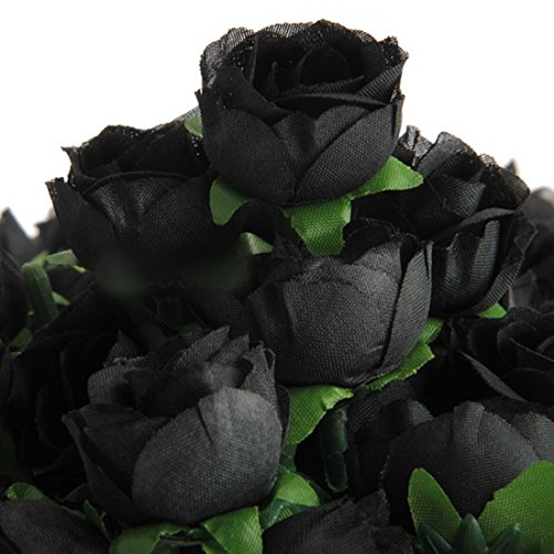 Black Rose Ͽ� Gostica: Black Roses: Amazon.co.uk