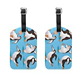 COOSUN Penguins Luggage Tags Travel Labels Tag Name Card Holder for Baggage Suitcase Bag Backpacks, 2 PCS