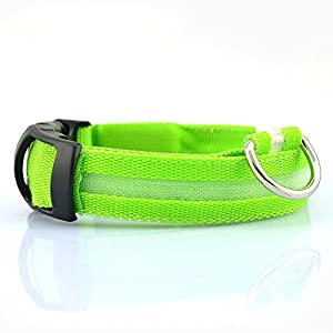 TKSTAR LED Dog collar with USB, rechargeable, luminous collars, flashing LED, dogs safety collar, night dog band with glowing bright, safety collar for dogs, pets 9