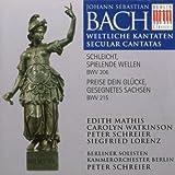 Cantates Profanes, BWV 206 & 215