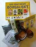 Tropica - Set - Bonsai Asiatisch - Samen von Blauregen, Mädchenkiefer, O.-Jasmin, R. Fächerahorn