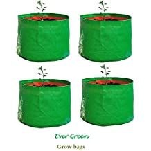 "Evergreen Terrace Gardening Leafy Vegetable Green Grow Bag (15"" X 15 "") - (Pack Of 4 )"