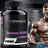 Dynamics Nutrition - Dynamic PUMP - 120 Kapseln Gefäßerweiterung bessere Durchblutung Muskelzellvolumen erhöhen Muskelpump Muskelaufbau