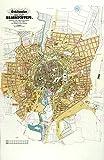 MAP ANTIQUE 1889 KNOLL BRAUNSCHWEIG MUNICIPAL PLAN REPLICA